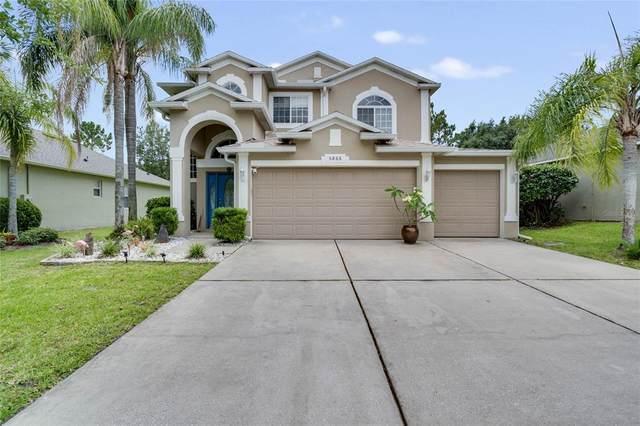 5866 Ansley Way, Mount Dora, FL 32757 (MLS #O5952249) :: Vacasa Real Estate