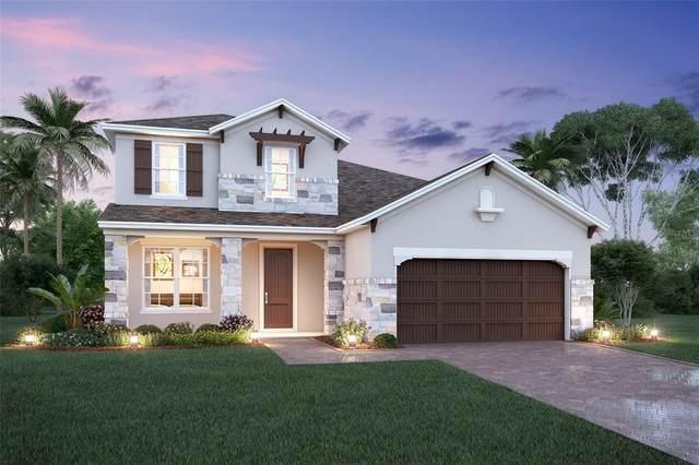694 Anna Ridge Road, Minneola, FL 34715 (MLS #O5952288) :: Griffin Group