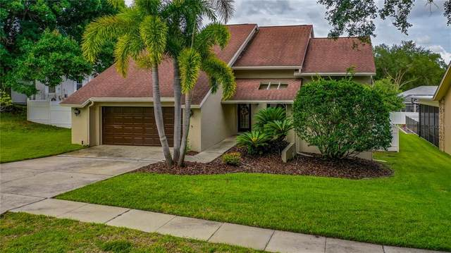 782 Timuquana Lane, Palm Harbor, FL 34683 (MLS #O5952313) :: Delgado Home Team at Keller Williams