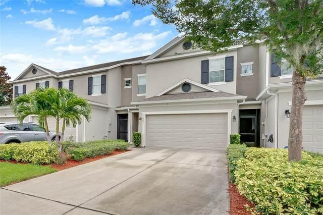 1489 Groundsel Lane, Ocoee, FL 34761 (MLS #O5952341) :: The Robertson Real Estate Group