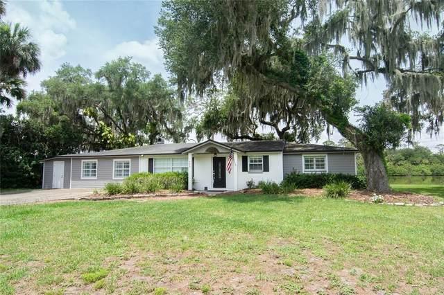 348 Rest Haven Road, Geneva, FL 32732 (MLS #O5952355) :: Armel Real Estate