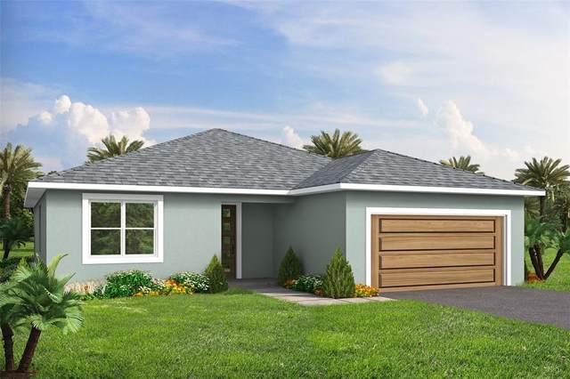 1170 Sandusky Street SE, Palm Bay, FL 32909 (MLS #O5952389) :: Heckler Realty