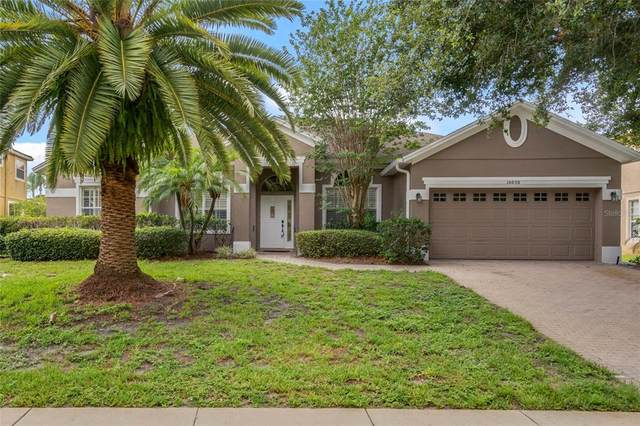 10050 Canopy Tree Court, Orlando, FL 32836 (MLS #O5952470) :: The Duncan Duo Team