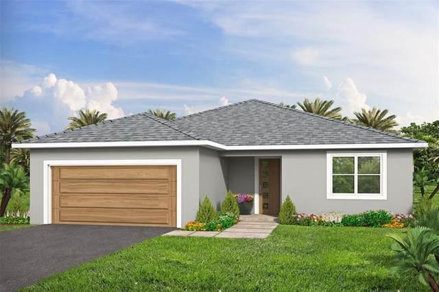 1095 Wyoming Drive SE, Palm Bay, FL 32909 (MLS #O5952480) :: Heckler Realty