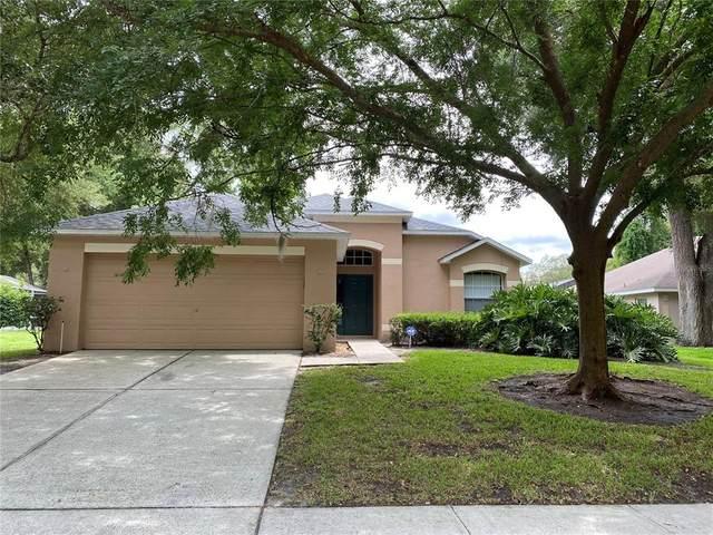 1212 Pat Patterson Court, Apopka, FL 32712 (MLS #O5952489) :: Young Real Estate