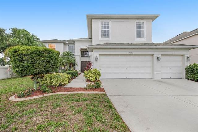 13002 Montrose Grove Court, Riverview, FL 33579 (MLS #O5952537) :: Team Bohannon