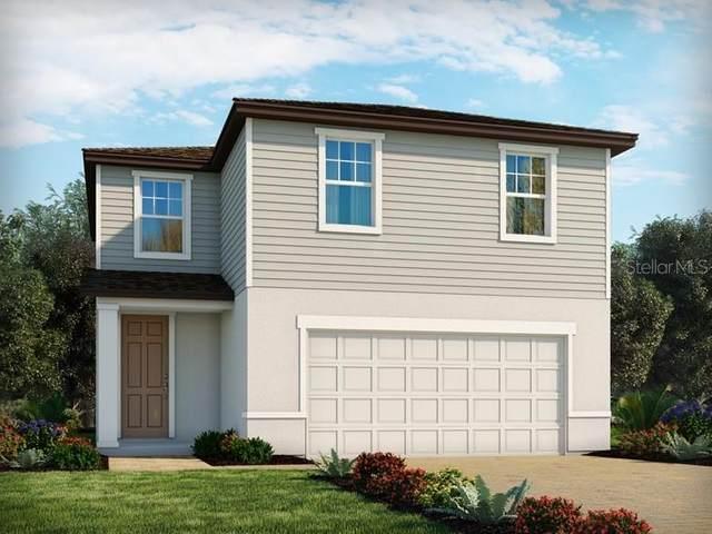29899 Anahid Drive, Leesburg, FL 34748 (MLS #O5952582) :: Alpha Equity Team