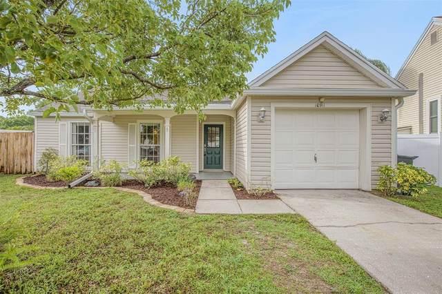 10911 Greenaire Drive, Tampa, FL 33624 (MLS #O5952603) :: Zarghami Group