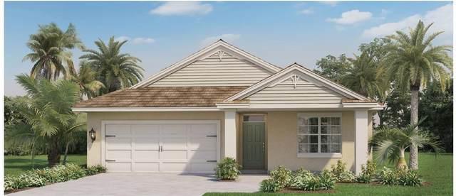 5700 Saddle Horn Lane, Apopka, FL 32712 (MLS #O5952663) :: GO Realty