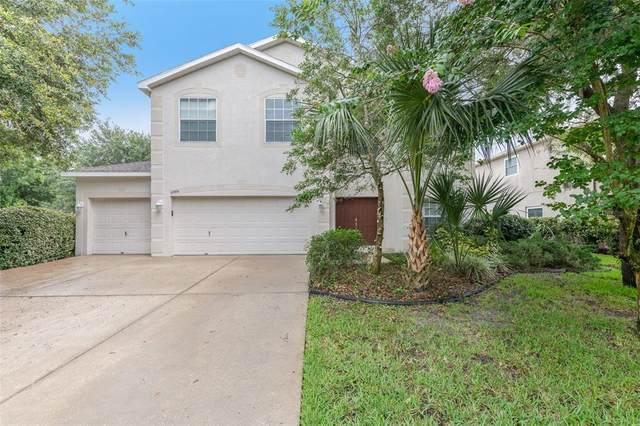 15306 Palomapark Lane, Lithia, FL 33547 (MLS #O5952731) :: The Robertson Real Estate Group
