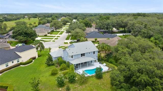 3409 Kilmarnock Dr, Apopka, FL 32712 (MLS #O5952840) :: Young Real Estate