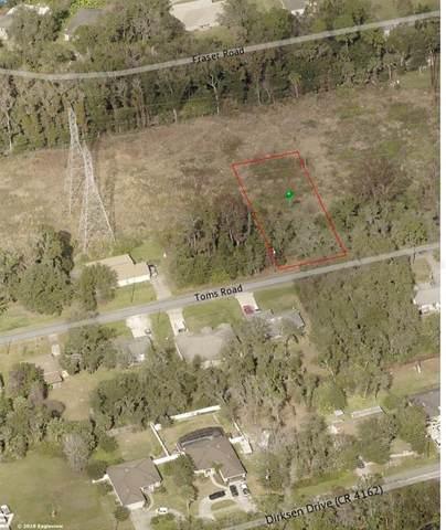 254 Toms Road, Debary, FL 32713 (MLS #O5952921) :: Armel Real Estate