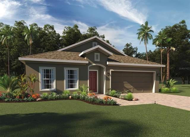 192 Jensen Drive, Groveland, FL 34736 (MLS #O5953073) :: Armel Real Estate