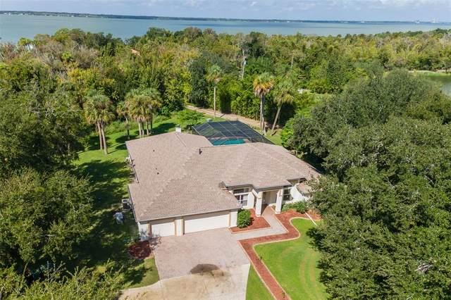 440 Pyber Lane, Merritt Island, FL 32953 (MLS #O5953186) :: Your Florida House Team