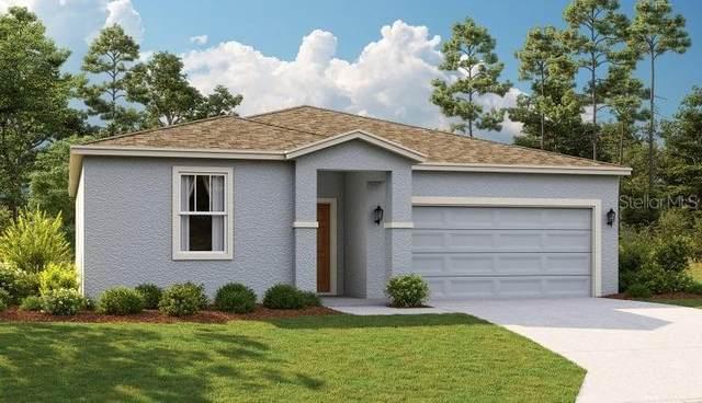 3582 Forster Avenue, Leesburg, FL 34748 (MLS #O5953196) :: Zarghami Group