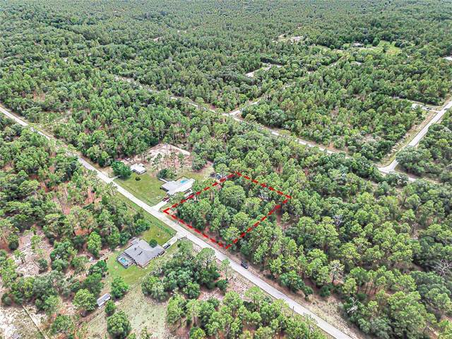 0 SW Big Tree Road SW, Dunnellon, FL 34431 (MLS #O5953198) :: Coldwell Banker Vanguard Realty