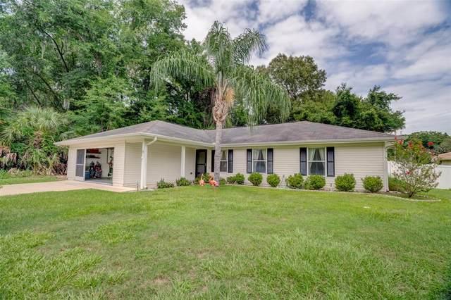 9 Hemlock Terrace Drive, Ocala, FL 34472 (MLS #O5953332) :: Zarghami Group