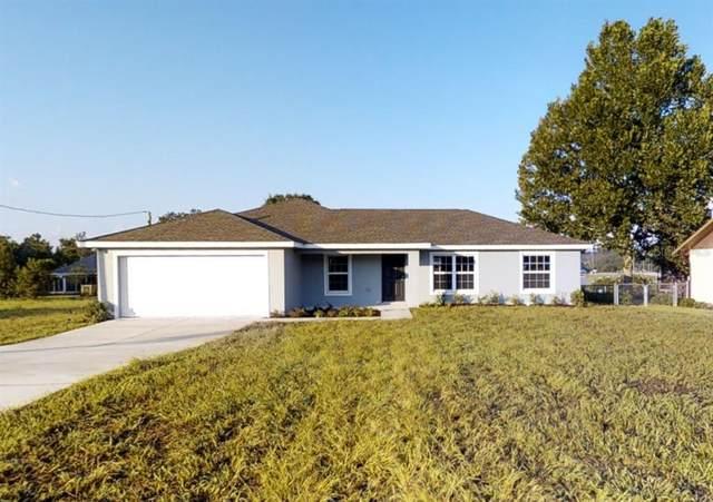 13791 SW 33RD Terrace, Ocala, FL 34473 (MLS #O5953349) :: The Price Group