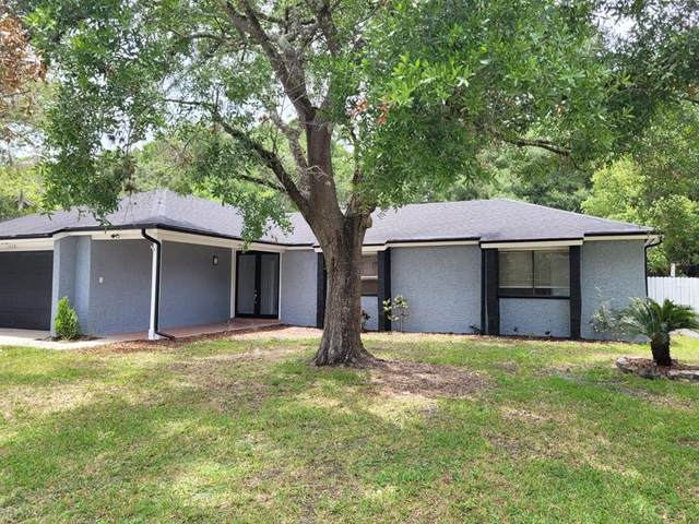 1336 N Marcy Drive, Longwood, FL 32750 (MLS #O5953438) :: Young Real Estate