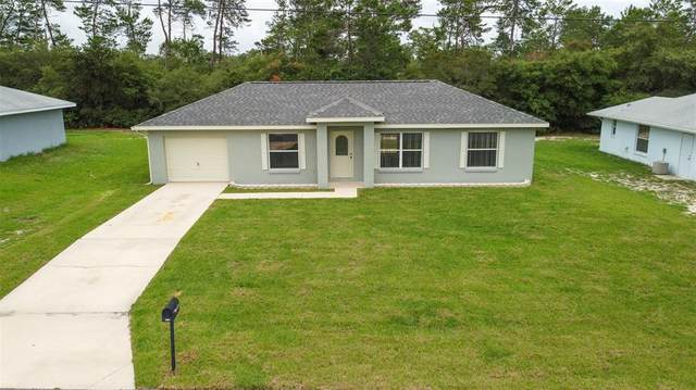 3132 SW 162ND STREET Road, Ocala, FL 34473 (MLS #O5953440) :: Coldwell Banker Vanguard Realty