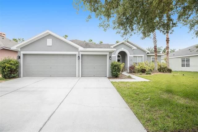 12311 Bramfield Drive, Riverview, FL 33579 (MLS #O5953441) :: Your Florida House Team