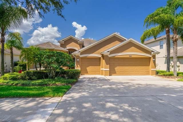 5376 Rishley Run Way, Mount Dora, FL 32757 (MLS #O5953560) :: Armel Real Estate