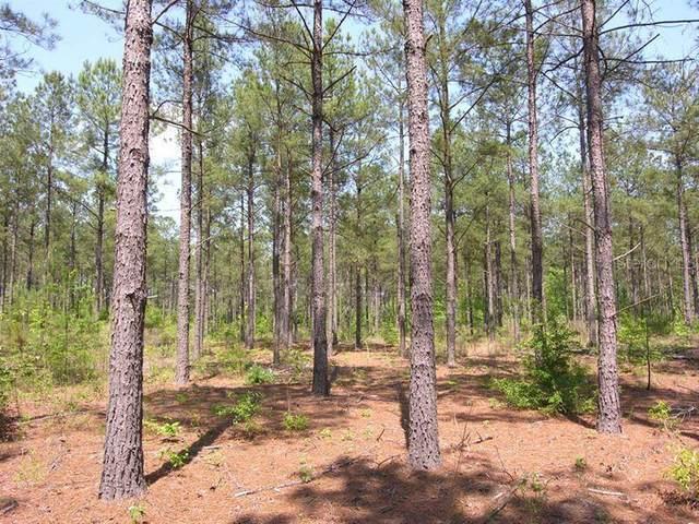 Reynolds Parkway, Orlando, FL 32833 (MLS #O5953597) :: Vacasa Real Estate