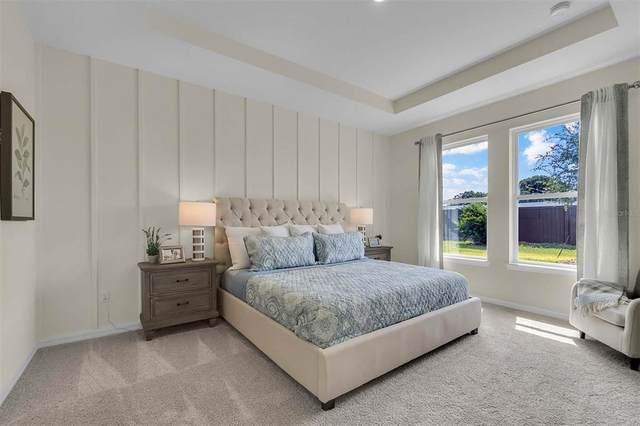 6775 Sarus Crane Point, Saint Cloud, FL 34773 (MLS #O5953680) :: Armel Real Estate