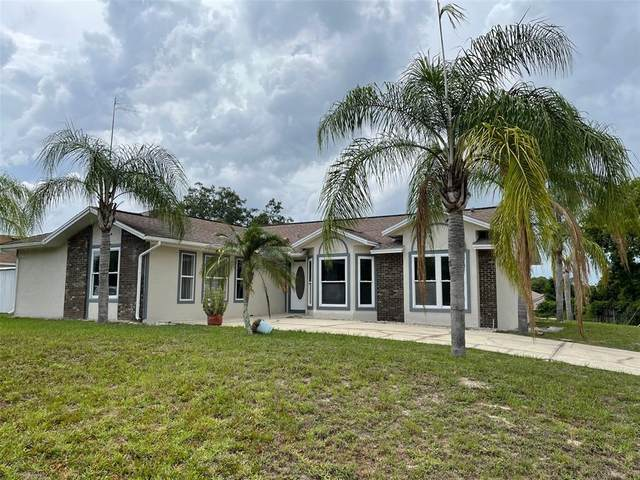 2036 Newmark Drive, Deltona, FL 32738 (MLS #O5953684) :: Prestige Home Realty