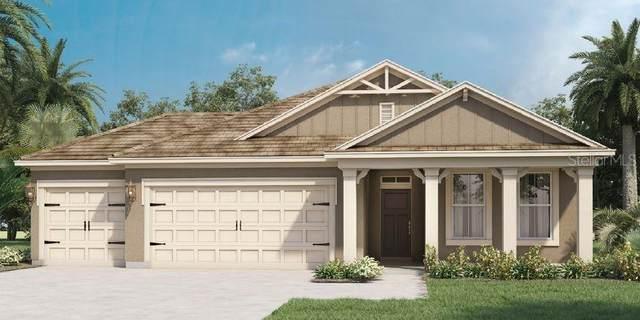 6766 Sarus Crane Point, Saint Cloud, FL 34773 (MLS #O5953688) :: Armel Real Estate