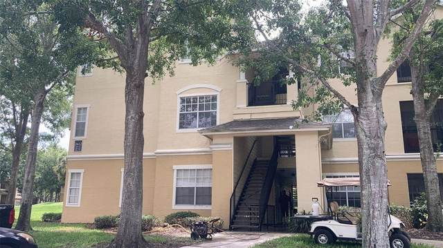 Orlando, FL 32835 :: Zarghami Group