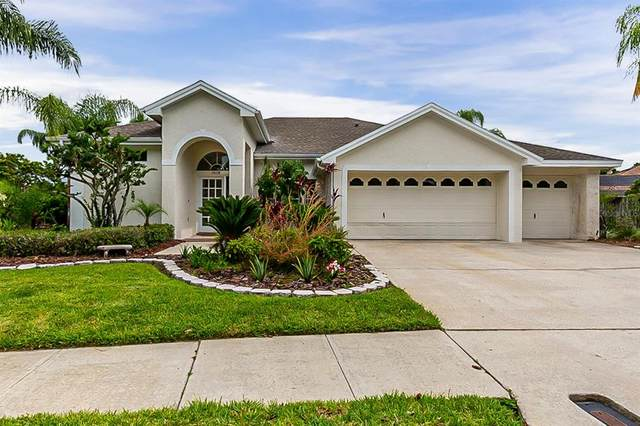 10118 Bennington Drive, Tampa, FL 33626 (MLS #O5953781) :: Griffin Group