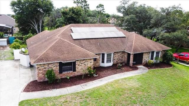 7209 Branchtree Drive, Orlando, FL 32835 (MLS #O5953814) :: Zarghami Group