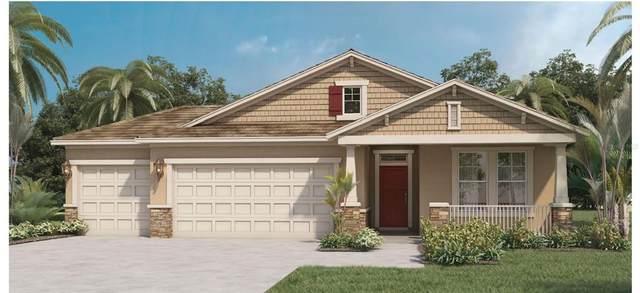 2957 Hooded Crane Road, Saint Cloud, FL 34773 (MLS #O5953888) :: Zarghami Group