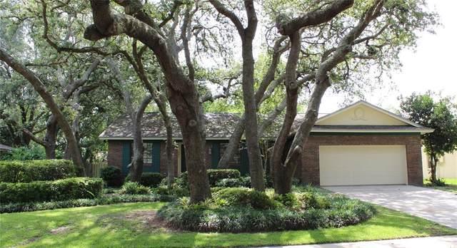 569 Heather Brite Circle, Apopka, FL 32712 (MLS #O5954047) :: Prestige Home Realty