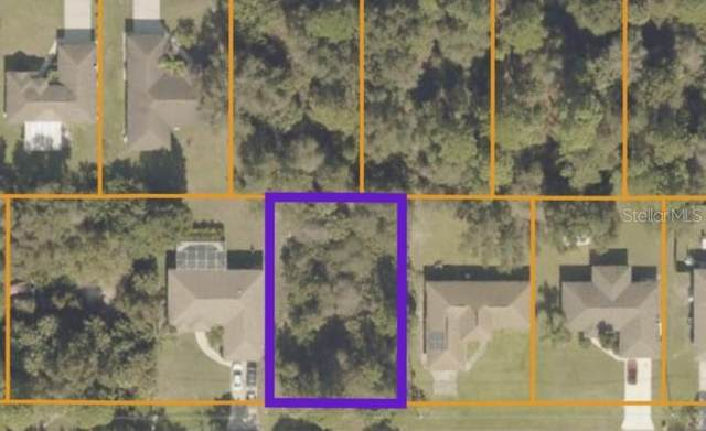 Worcester Avenue, North Port, FL 34287 (MLS #O5954087) :: The Price Group