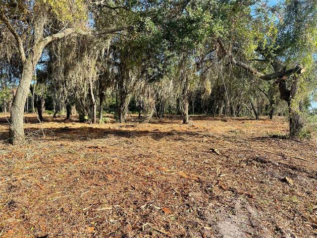 3524 Hickory Tree Road, Saint Cloud, FL 34772 (MLS #O5954150) :: Gate Arty & the Group - Keller Williams Realty Smart