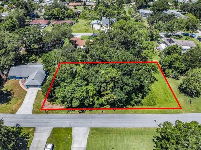 2904 Umbrella Tree Drive, Edgewater, FL 32141 (MLS #O5954356) :: Gate Arty & the Group - Keller Williams Realty Smart