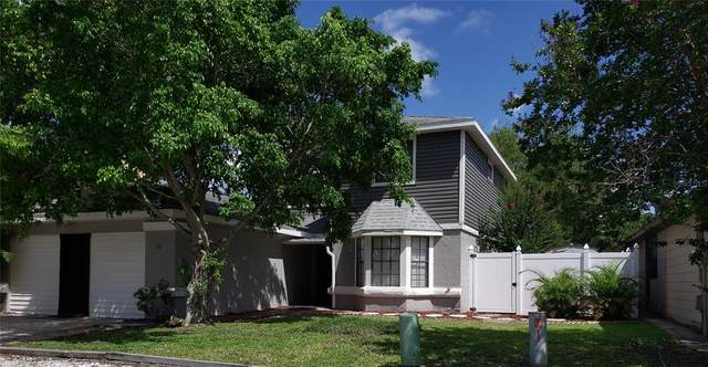 176 Coralwood Circle, Kissimmee, FL 34743 (MLS #O5954945) :: Zarghami Group