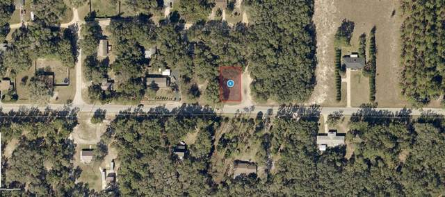 Lake Griffin Road, Lady Lake, FL 32159 (MLS #O5955140) :: Your Florida House Team