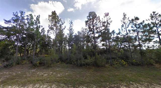 Greenview Court, Chipley, FL 32428 (MLS #O5955488) :: RE/MAX Elite Realty