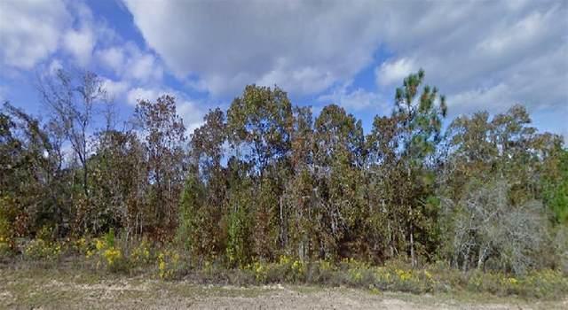 Norvell Street, Chipley, FL 32428 (MLS #O5955516) :: Sarasota Gulf Coast Realtors