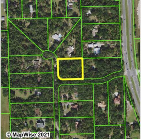 Southwood Boulevard, Kissimmee, FL 34746 (MLS #O5955553) :: The Paxton Group