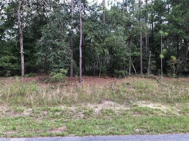 9327 N Sherman Drive, Citrus Springs, FL 34434 (MLS #O5955573) :: Cartwright Realty