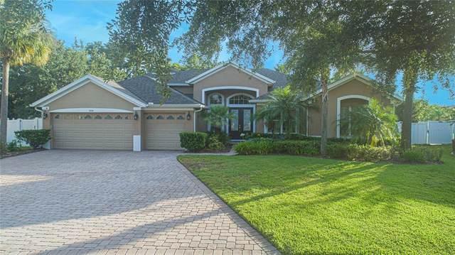3056 Lake Jean Drive, Orlando, FL 32817 (MLS #O5955588) :: Zarghami Group