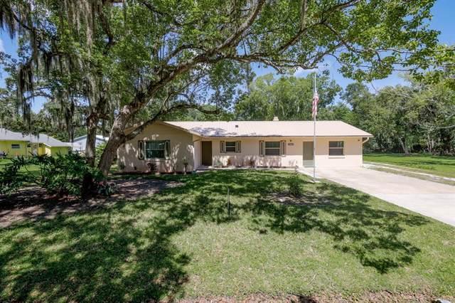 New Smyrna Beach, FL 32168 :: Zarghami Group