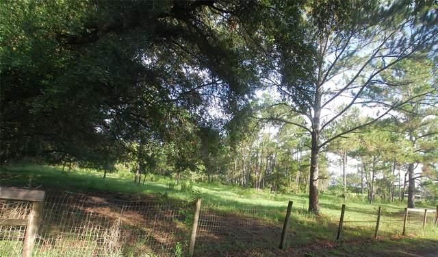 E Ohio Avenue, Lake Helen, FL 32744 (MLS #O5955833) :: American Premier Realty LLC