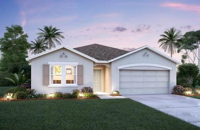 13522 Palmera Vista Drive #708, Riverview, FL 33579 (MLS #O5955937) :: Zarghami Group