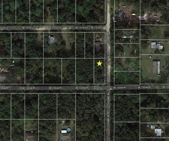 Se 132Nd Place, Belleview, FL 34420 (MLS #O5956441) :: Team Turner
