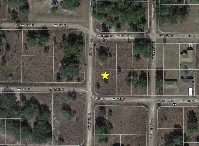 SW 113TH Place, Dunnellon, FL 34432 (MLS #O5956486) :: Team Turner